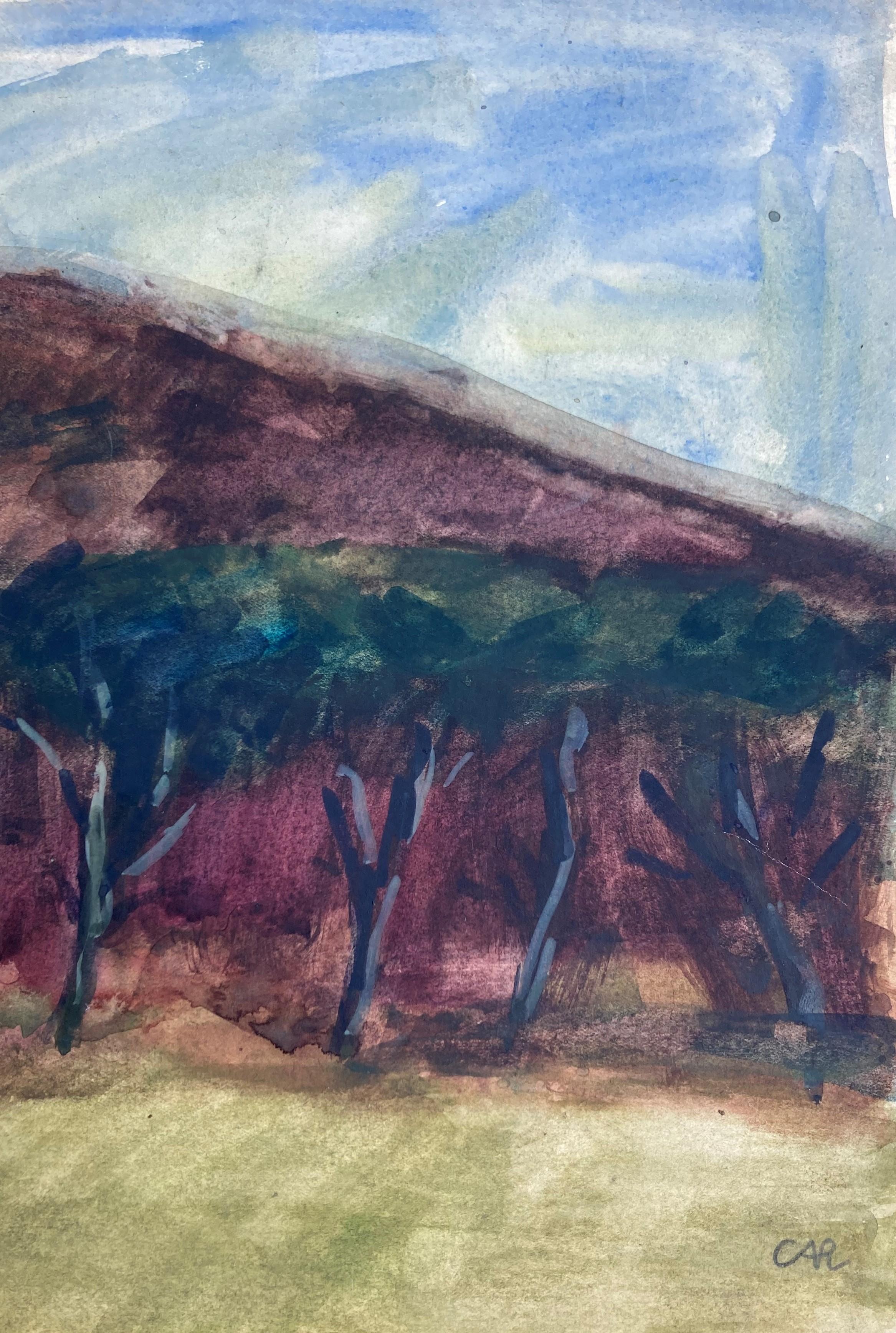 Dünenlandschaft auf Sylt